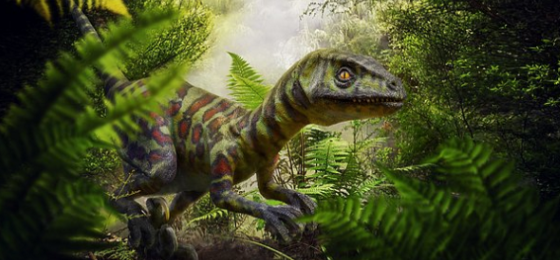Raptor type of dinosaur in a green setting