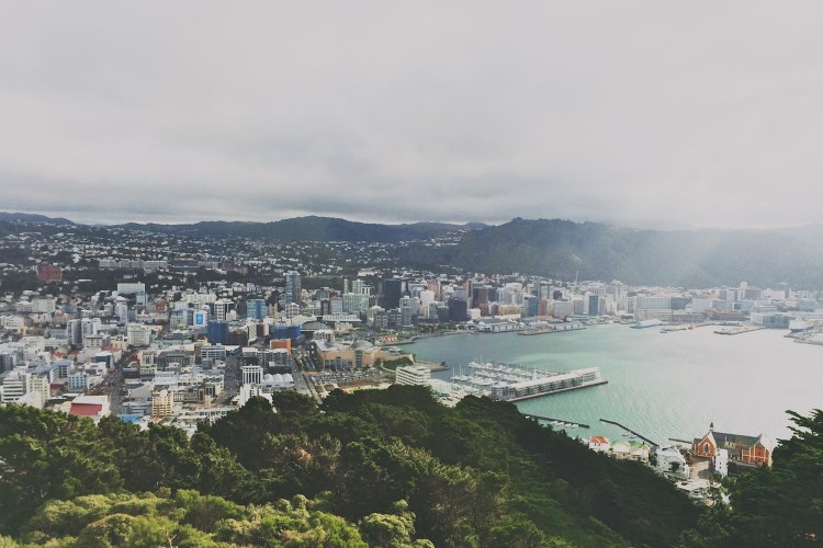 Wellington panoramic view